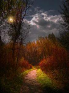 autumnmoonlit