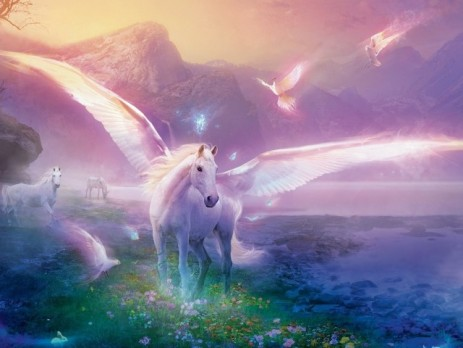 wpid-unicorn_wallpaper_background_27219-640x480.jpg