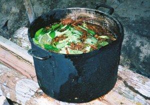 ayahuasca-brewing