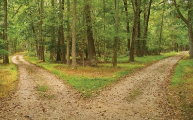 choice-crossroads-forest-green-life-Favim.com-180362