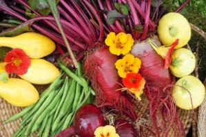 vegetables-95429427_208222c.jpg